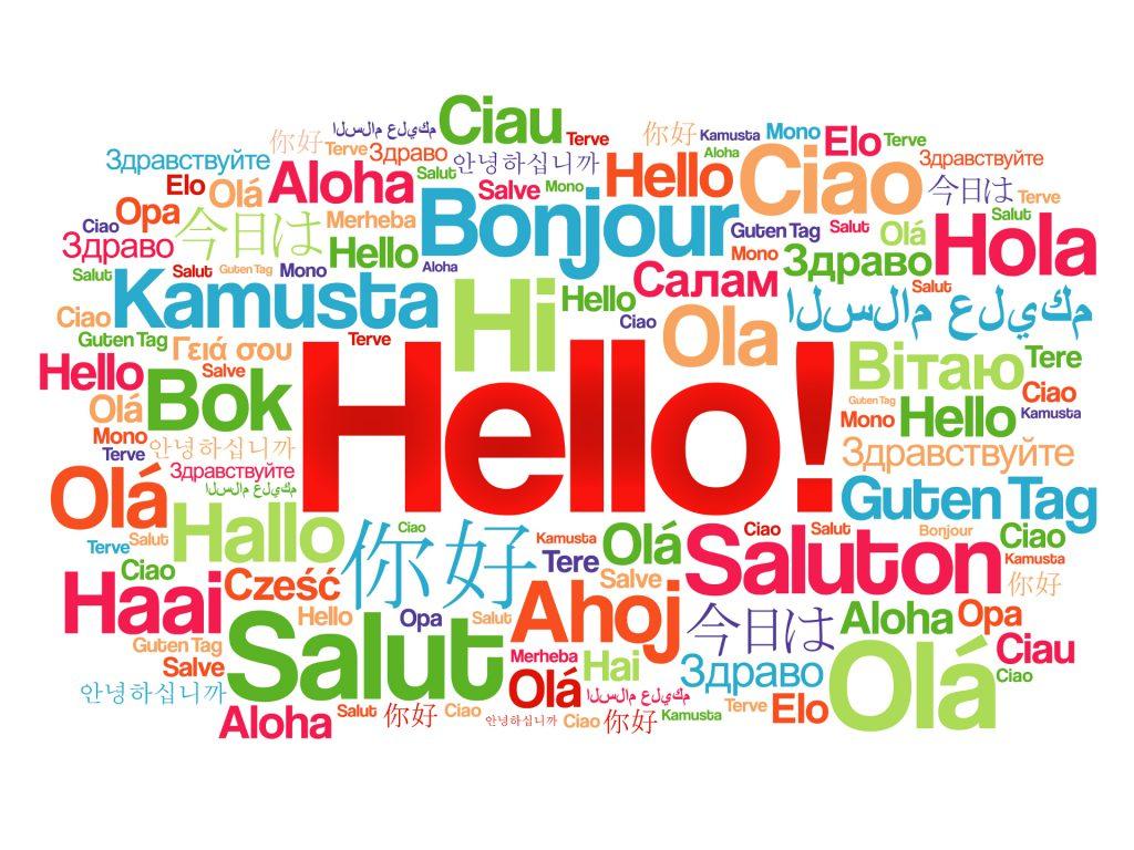 profesjonalne kursy językowe